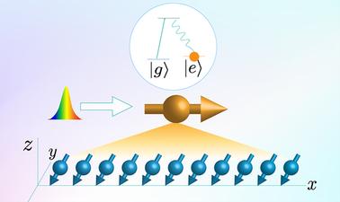 Quantum Detectors