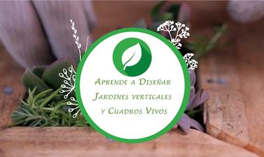 Aprende a diseñar jardines verticales y cuadros vivos