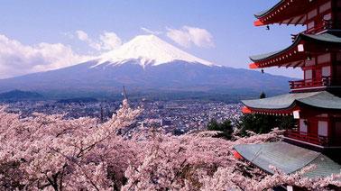 Japanese Culture and Language (II)  日语与日本文化(2)