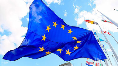 The EU and Human Rights