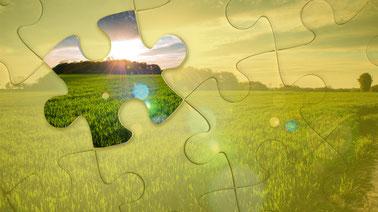 Sustainable Agri-food Marketing