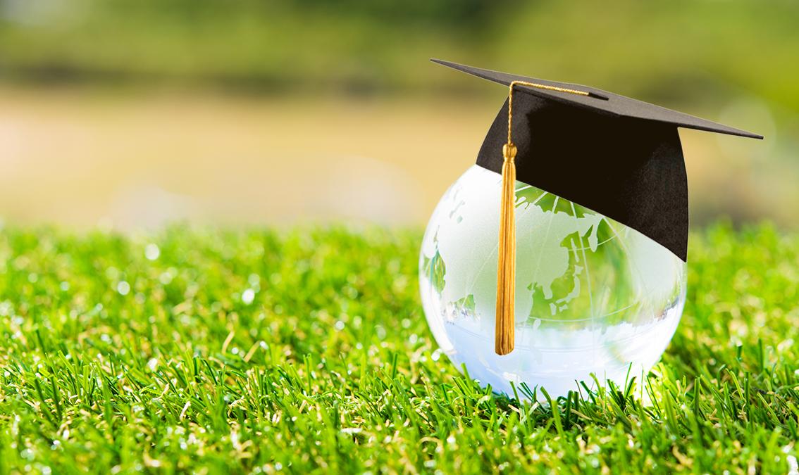 Educación Supranacional: Organismos Internacionales y su impacto en las políticas educativas 5