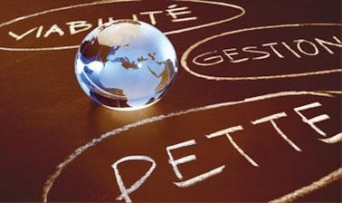 Viabilité et gestion de la dette des pays à faible revenu