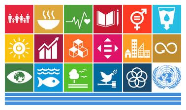 The UN Sustainable Development Goals: an Interdisciplinary Academic Introduction