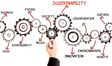 Introduction to Corporate Sustainability, Social Innovation and Ethics