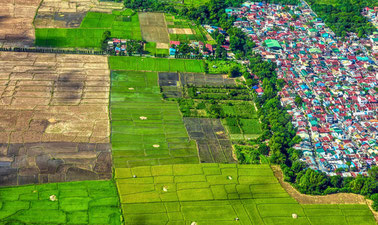 Food and Nutrition Security in Urbanizing Landscapes