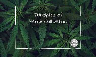 Principles of Hemp Cultivation