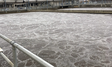 Nutrient Removal and Resource Recovery in Wastewater