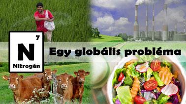 Nitrogen: A Global Challenge (Hungarian)
