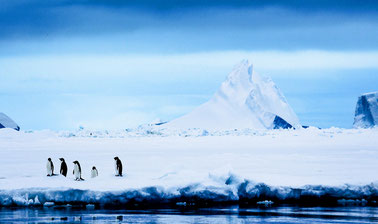 Antarctica: Life on the Frozen Continent